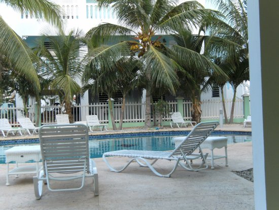 Coral Paradise Resort: These were taken over the Fourth of July 2016. We were treated with so much care, attention and
