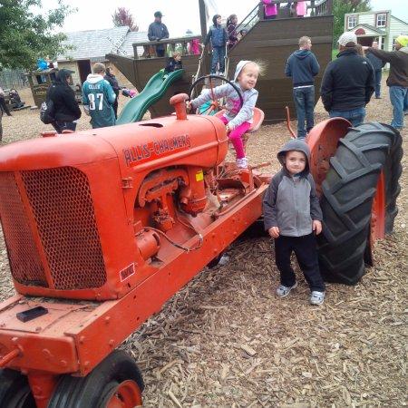 Poplar Grove, IL: Tractors