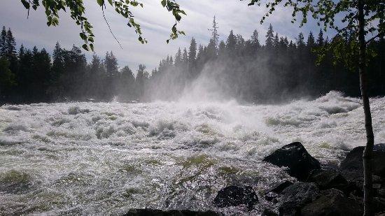Norrbotten County, Sweden: DSC_4009_large.jpg