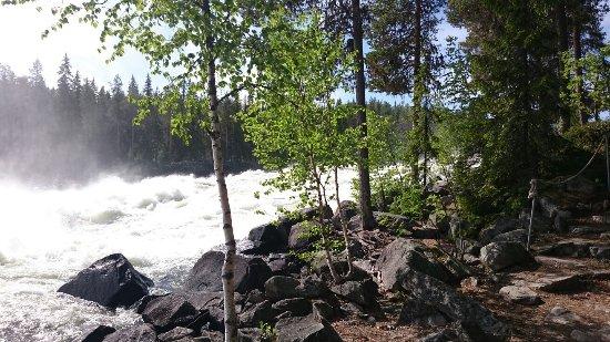 Norrbotten County, Sweden: DSC_4010_large.jpg