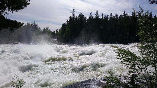 Norrbotten County, Sweden: DSC_4011_large.jpg