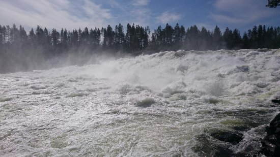 Norrbotten County, Sweden: DSC_4020_large.jpg