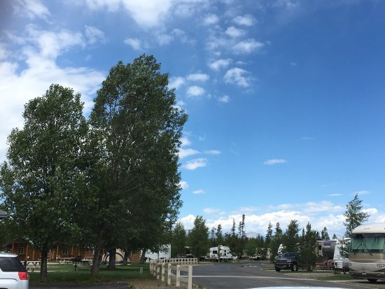 Yellowstone Grizzly RV Park: photo2.jpg