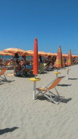 Calambrone, إيطاليا: La spiaggia