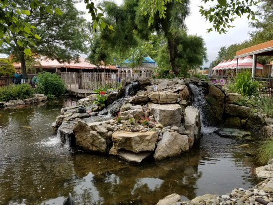 Melville, NY: Beautiful Koirala pond and lovely landscaping!