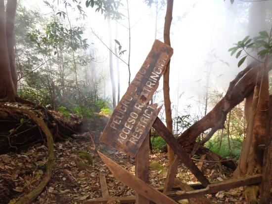 Hacienda Guachipelin: Inside the Park