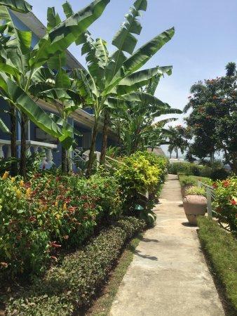 Jamaica Inn Photo