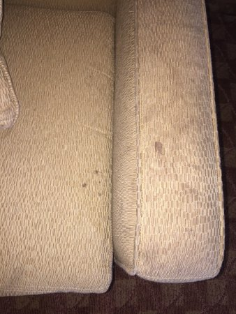 Wyndham Nashville: Stained couch - disgusting!