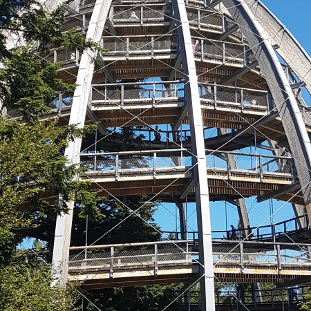 Neuschonau, Tyskland: the egg-tower inside the forest