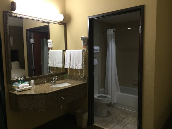 Holiday Inn Express Round Rock: Sink into bathroom