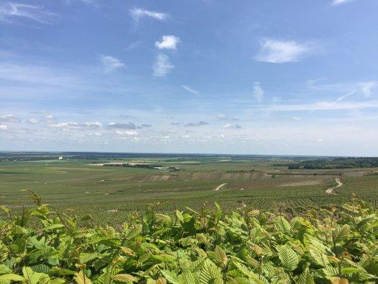 Verzenay, Francia: vista dal faro