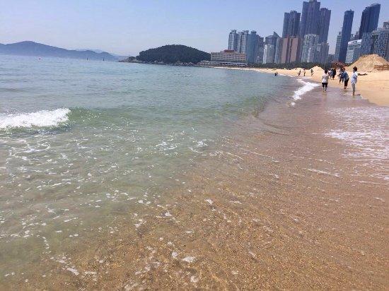 Haeundae Beach: photo5.jpg