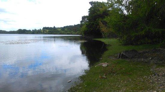 Roundwood, Irlandia: IMAG0991_large.jpg