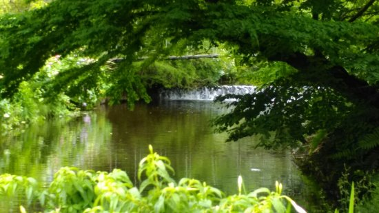 Roundwood, Irlandia: IMAG0997_large.jpg