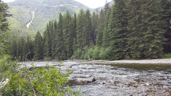 Hawley Mountain Guest Ranch: Trout fishing on Boulder River