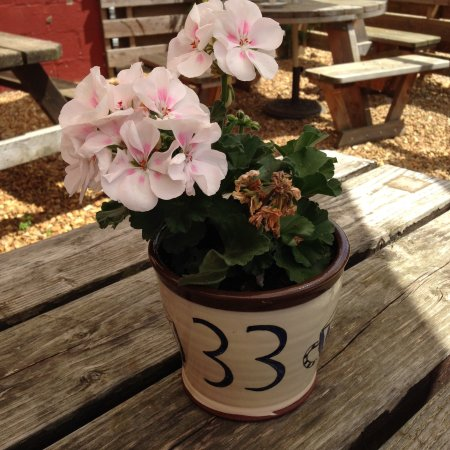 Deepdale Cafe: Great table number idea.