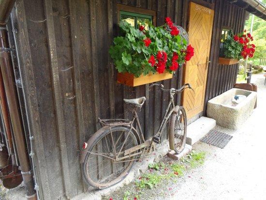 Gasthaus Schwellhäus'l Foto