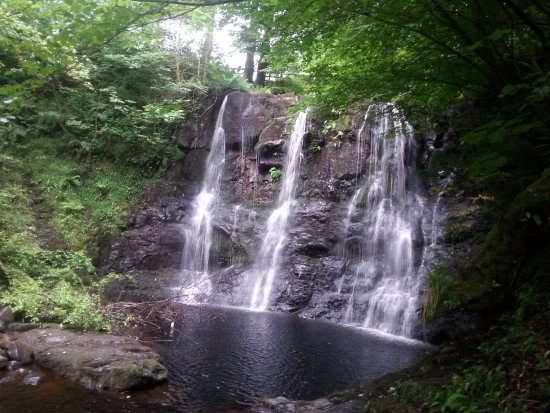 Glenariff, UK: This waterfall is along the forest trail just down the road from Lurig View