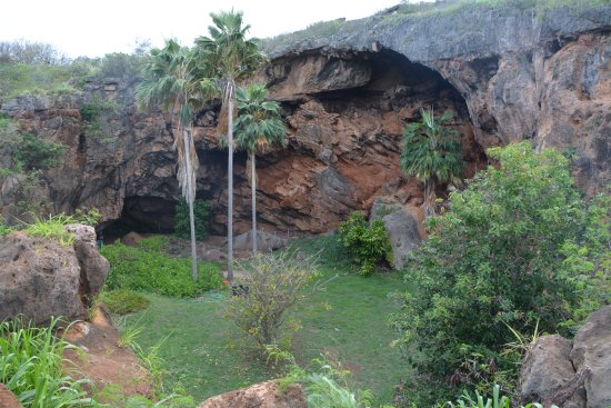 Kalaheo, Hawaï : There are significant ancient historical artifacts found in cave.