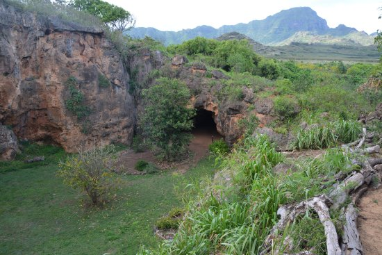Kalaheo, Hawaï : Entrance from inside the cave.