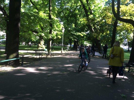 Planty Park: Plant Park