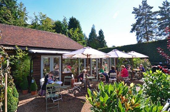 Great Park Farm Nursery Cafe