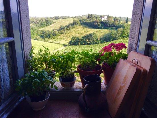 Elena\'s kitchen - Picture of Borgo Argenina, Gaiole in Chianti ...