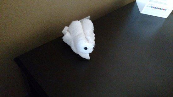 Englewood, Colorado: Towel Animal (a bunny)