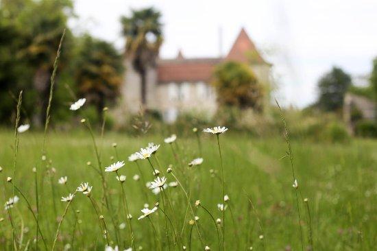Zdjęcie Villefranche-de-Lonchat