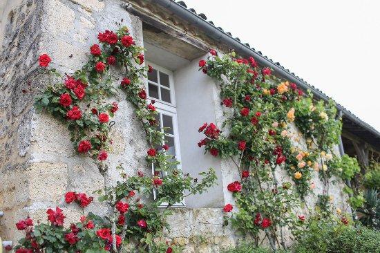 Villefranche-de-Lonchat ภาพถ่าย