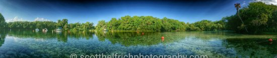 Salt Springs, FL: 20160624_090115-01_wm_large.jpg