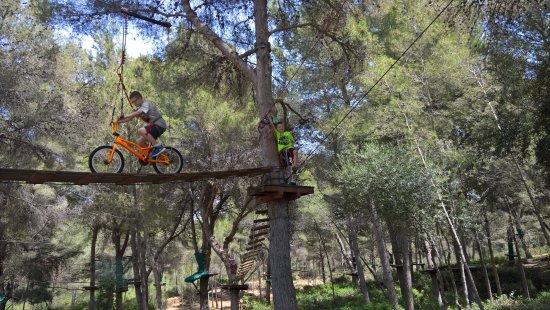 Recorrido Extremo - Foto di Jungle Parc, Santa Ponsa - TripAdvisor