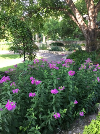 Fort Worth Botanic Garden: near visitor center