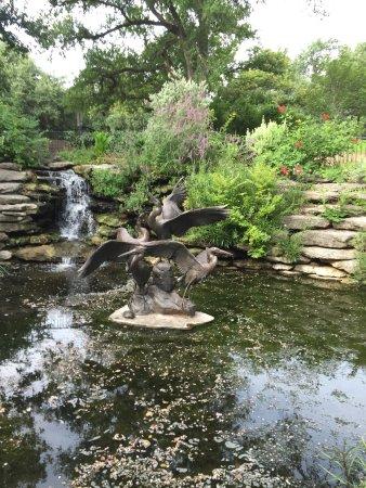 Fort Worth Botanic Garden: across the street from the Japanese garden