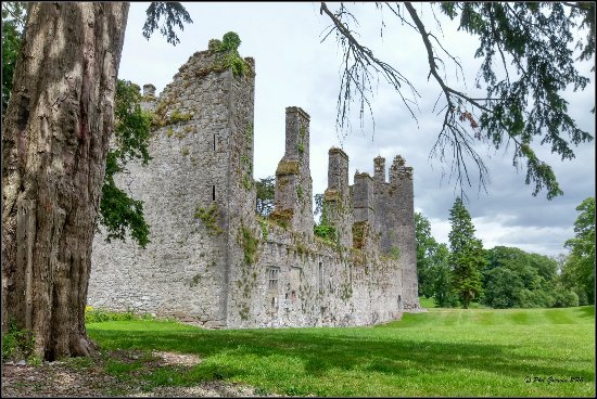 Castlemartyr, Irlande : You could spend a day just looking around the beautiful grounds