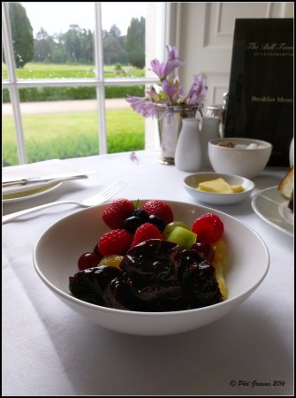 Castlemartyr, Irlanda: Breakfast with a view