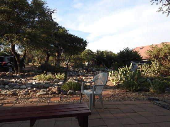 Hereford, AZ: Back Yard