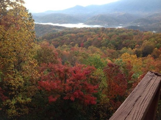 The Foxtrot Bed and Breakfast: Beautiful fall foliage and Gatlinburg down below.