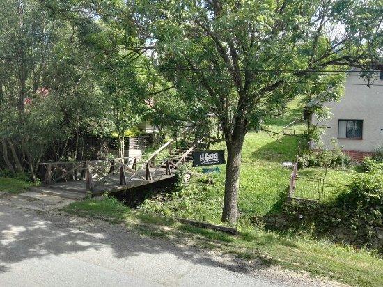 Regetovka – fotografia