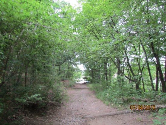 Den Rock Park: Trail