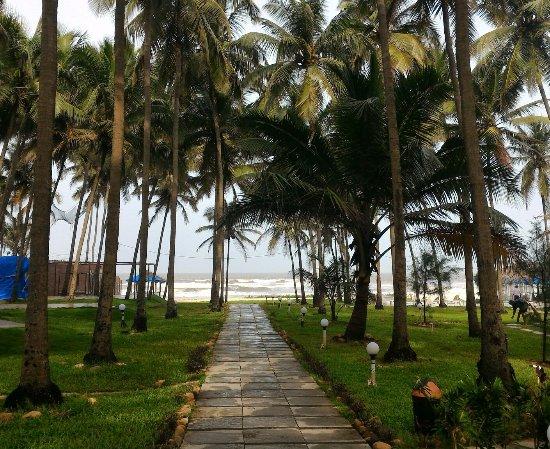 Ashvem Beach, الهند: P_20160706_090920_1_large.jpg