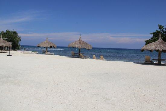 Bluewater Panglao Beach Resort: Beach shore