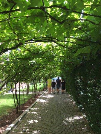Gutsschanke Schloss Johannisberg: Ein sonniger Tag im Rheingau, den wir nie vergessen werden. Eine ausgezeichnete Küche, toller Se