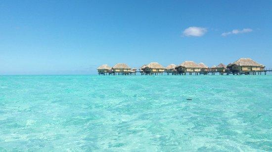 Bora Bora Pearl Beach Resort & Spa: 20160629_115619_large.jpg