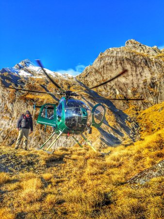 Mountain Helicopters : photo0.jpg