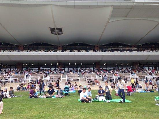 Hakodate Horse Racetrack: photo0.jpg