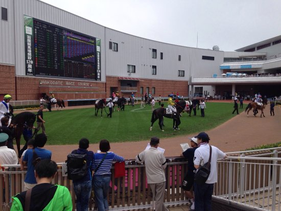 Hakodate Horse Racetrack: photo1.jpg