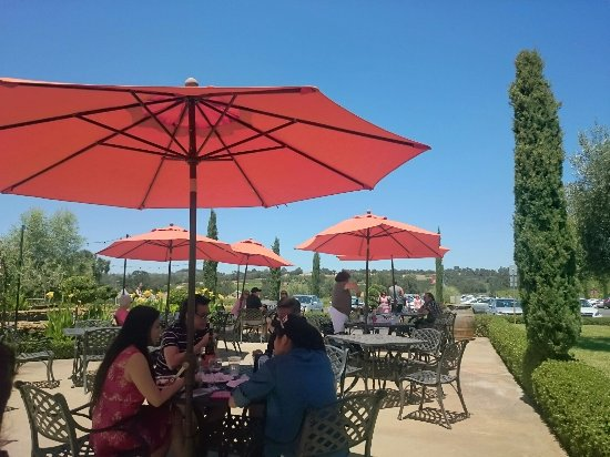Plymouth, Калифорния: Bella Piazza Winery
