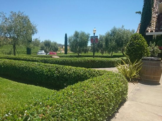 Plymouth, Californien: Bella Piazza Winery