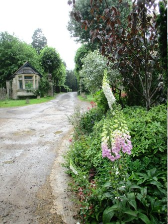 The Jolly Huntsman Bed and Breakfast Photo